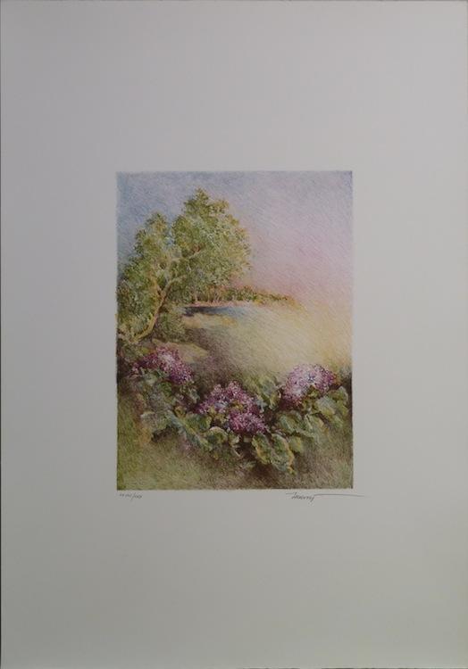 Ortensie rosa 1986. Litografia 23,7x17,5 foglio 50x35