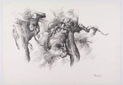 Alberi di roccolo 1997 I. Disegno a matita 33x47,5