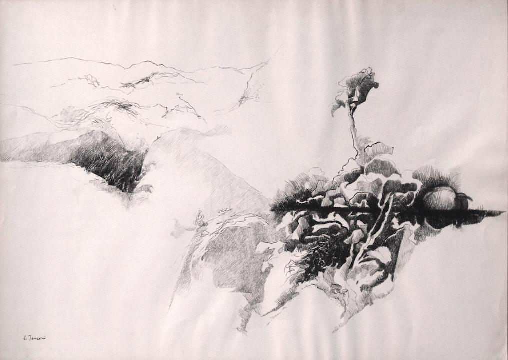 Grande zucca e colline 1972. Disegno a Conté 50x70