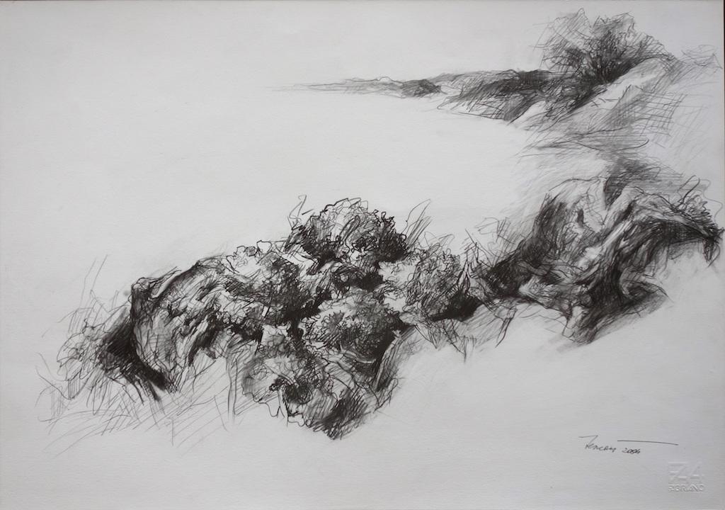 Ortensie, 2004. Disegno a matita 35x50