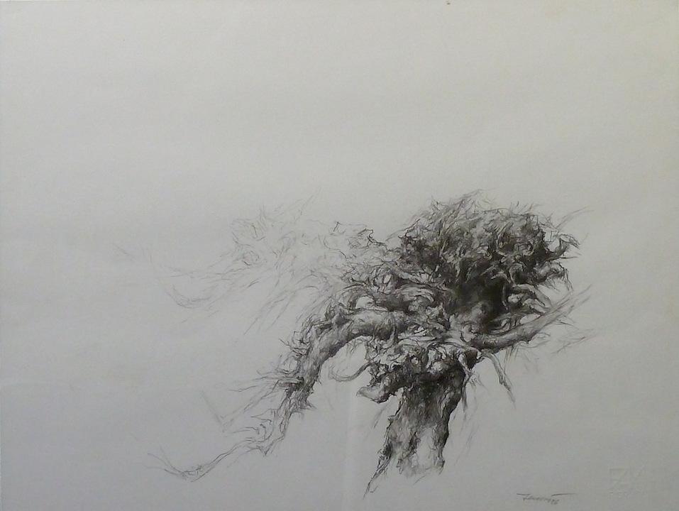 Albero di roccolo 1986. Disegno a matita 33x47,5