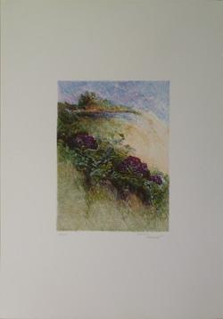 Ombra verde ombra 2, 1979. Litografia 23,8x17,8, foglio 50x35