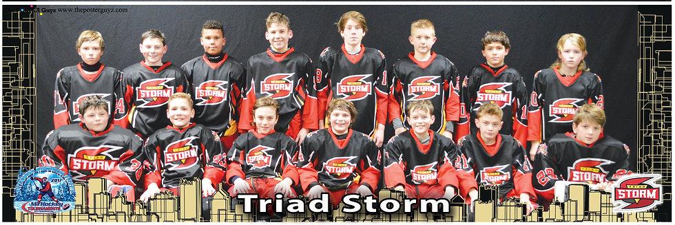 Triad Storm Pee Wee AA
