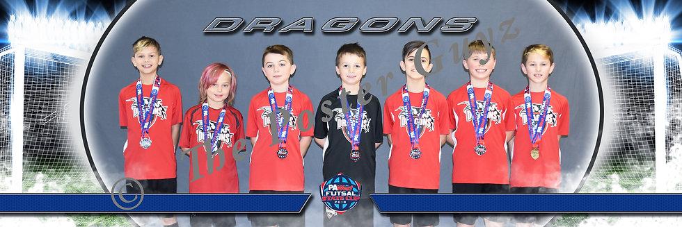 Dragons Futsal U11B Finalist
