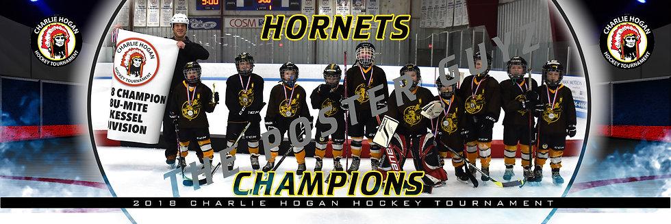 Hornets Champion