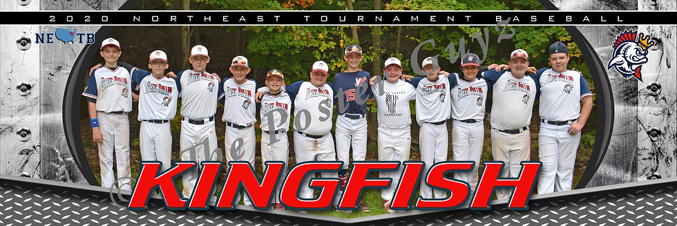 Steel Valley Kingfish 12U