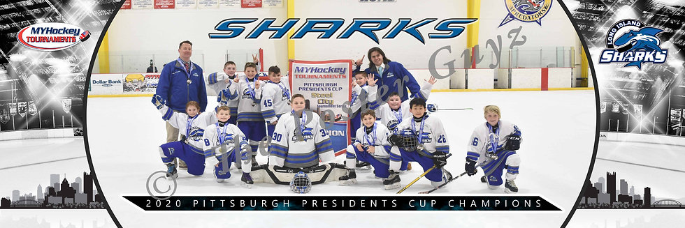 Long Island Sharks Squirt A Minor Champions