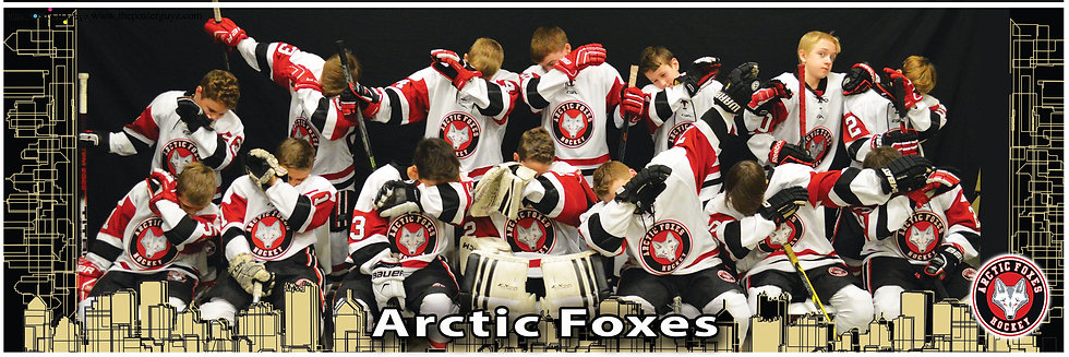 Arctic Foxes Pee Wee Minor A -Funny