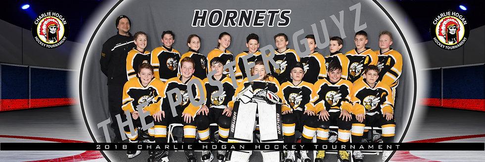 Mt Lebo Hornets 12u A-major