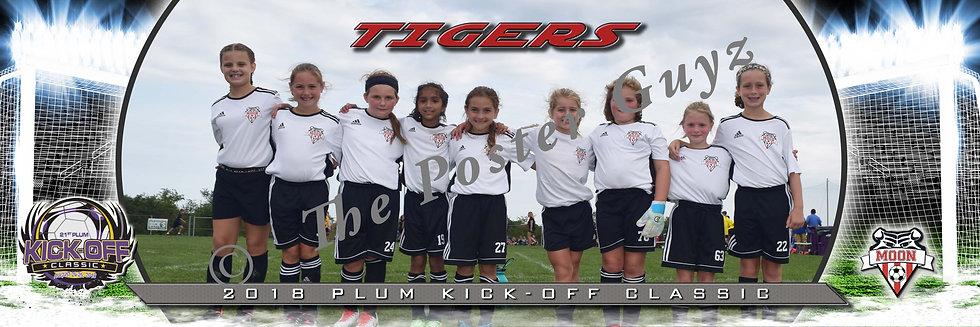 Moon Tigers White Girls U10