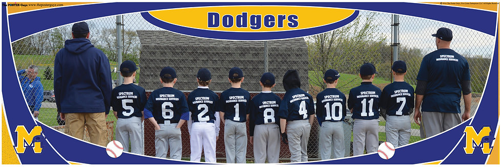 Dodgers Minor Backs