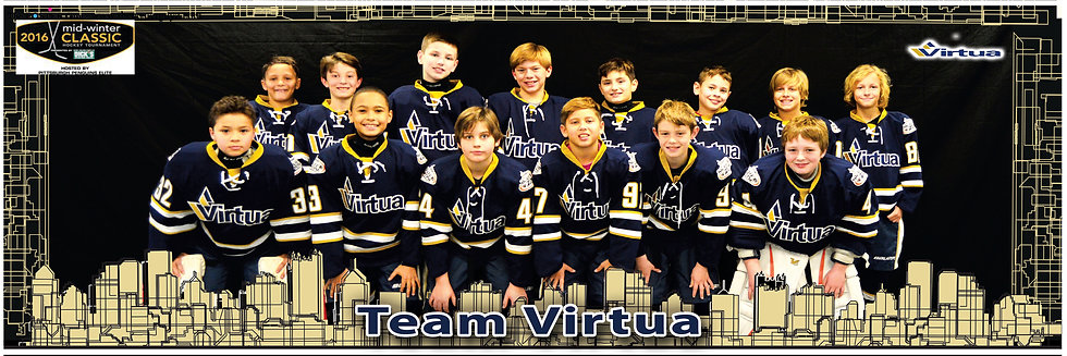 Team Virtua 06 w/o flash