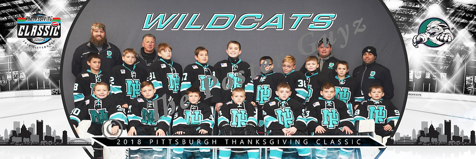 North Pittsburgh Wildcats Squirt AA