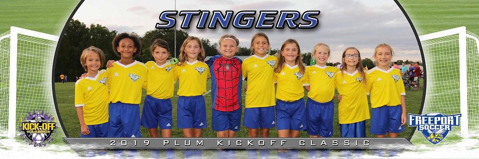 Freeport Stingers Girls U10 Silver