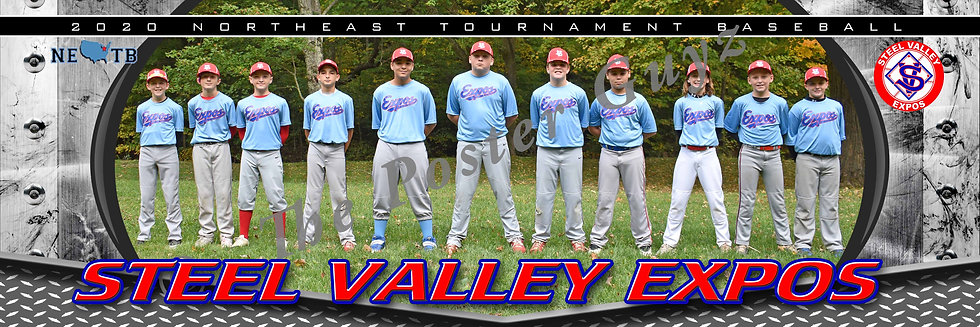 Steel Valley Expos 12U