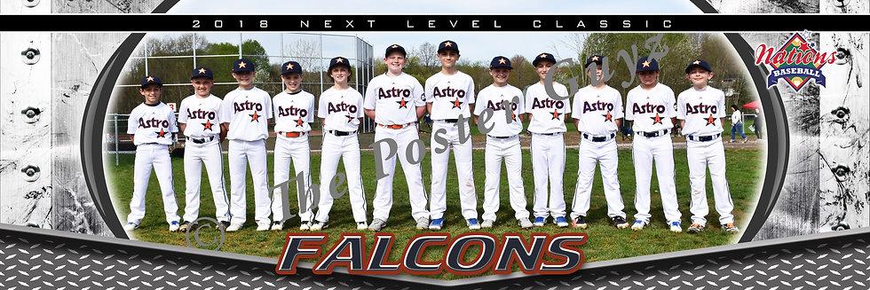 Astro Falcons 10u