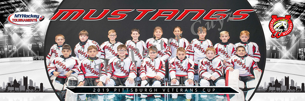 Clarence Mustangs Squirt Minor AA