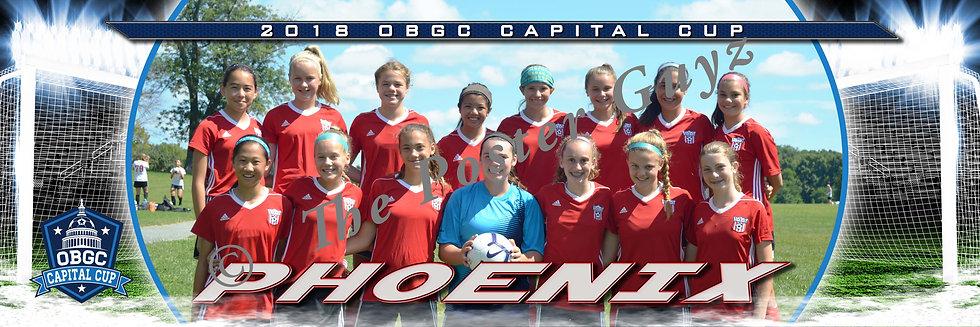 VYS Phoenix 05 (VA) Girls U14