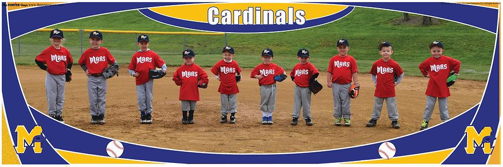 Cardinals Tball