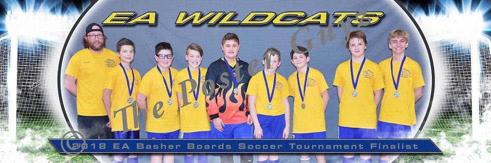 EA Wildcats Gold U14B Finalist