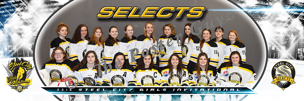 Steel City Selects 19U