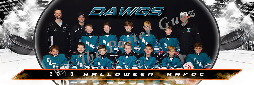 Butler Valley Dawgs - A Division