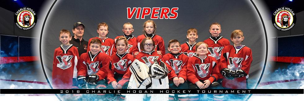 Vipers Jarret