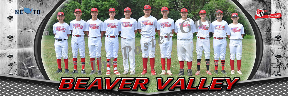 Beaver Valley Red  12U without coach