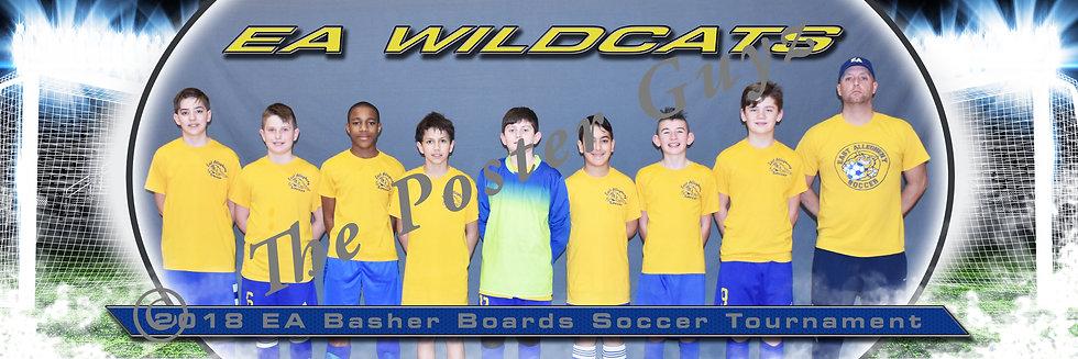EA Wildcats Blue U14B