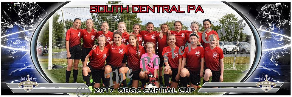 SOUTH CENTRAL PA SCPASA 04 LADY LIONS Girls U14