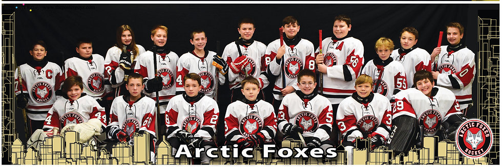 Arctic Foxes Pee Wee A