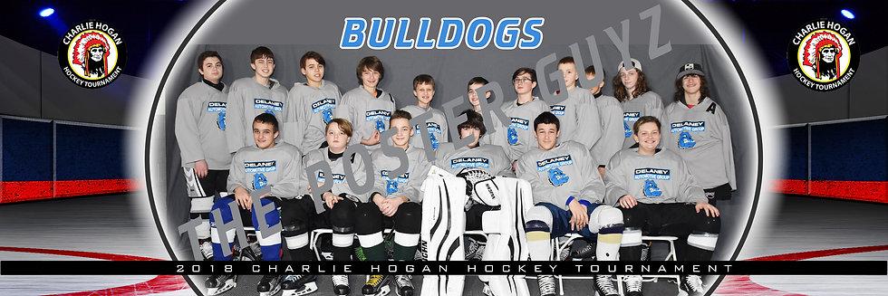 Delaney Bulldogs 14U A Major