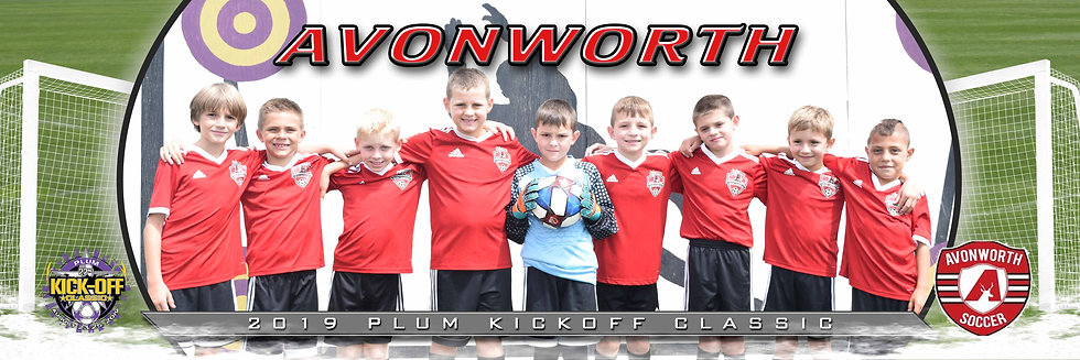 Avonworth Ziegler Boys U10 Bronze