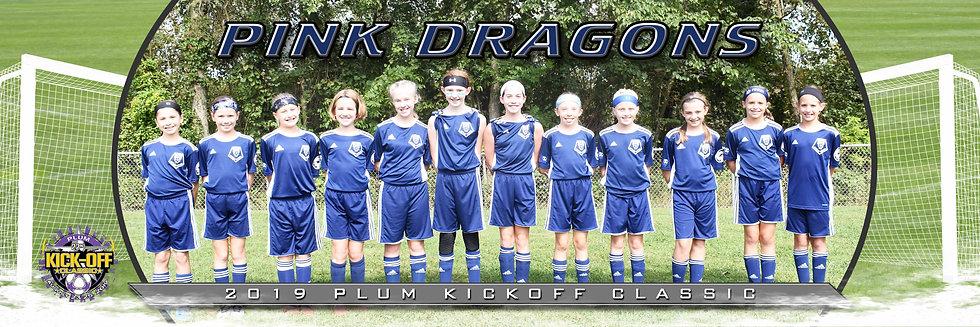 Butler Pink Dragons Girls U11 Gold