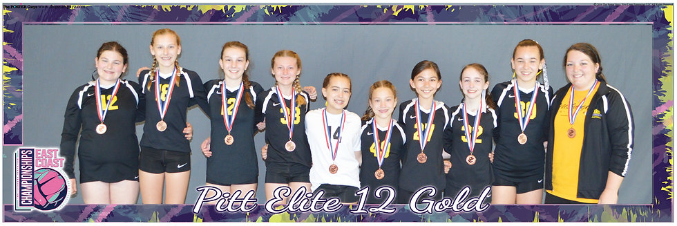 Pitt Elite Gold with Pitt