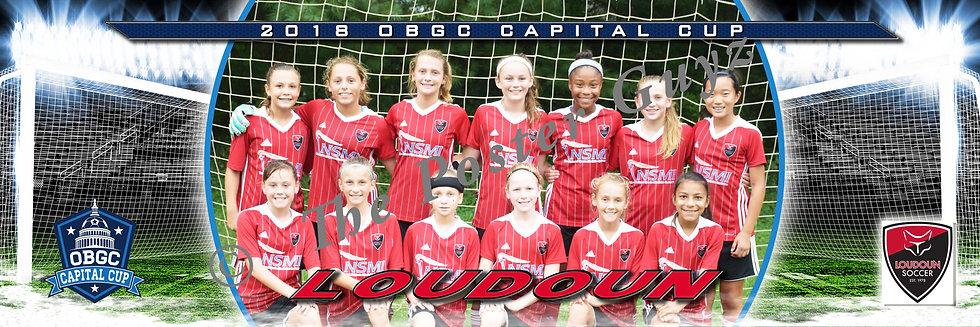 Loudoun Soccer 07G Red (VA) Girls U12