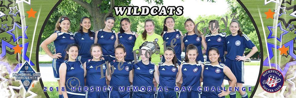 Hicksville SC Wildcats u15G