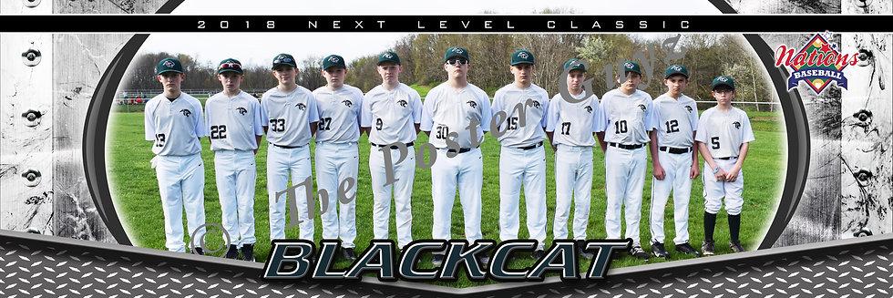Blackcat Baseball 12u
