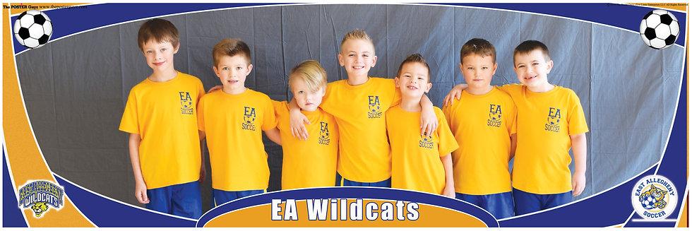 EA Wildcats U8 version 1