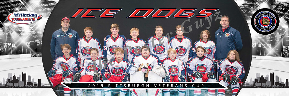 Northern VA Ice Dogs Peewee