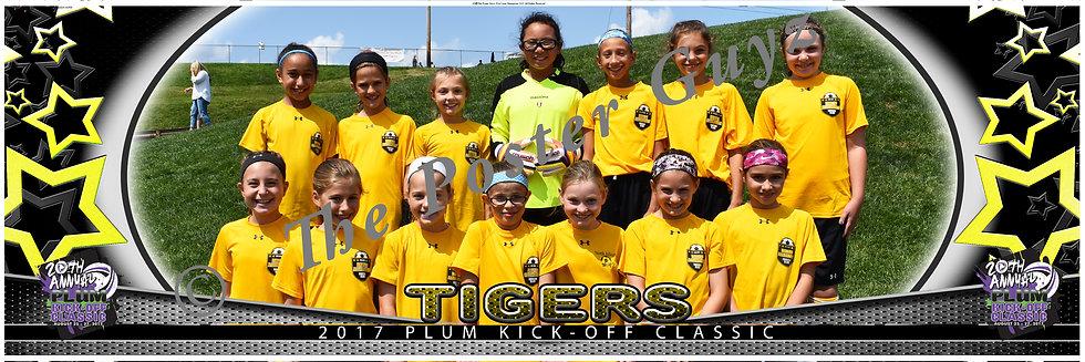 North Allegheny Tigers U11G