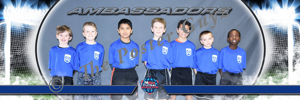 Ambassadors 2008