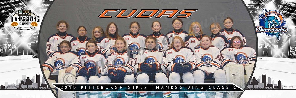 Burlington Barracudas u10