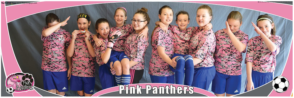Pink Panthers Funny