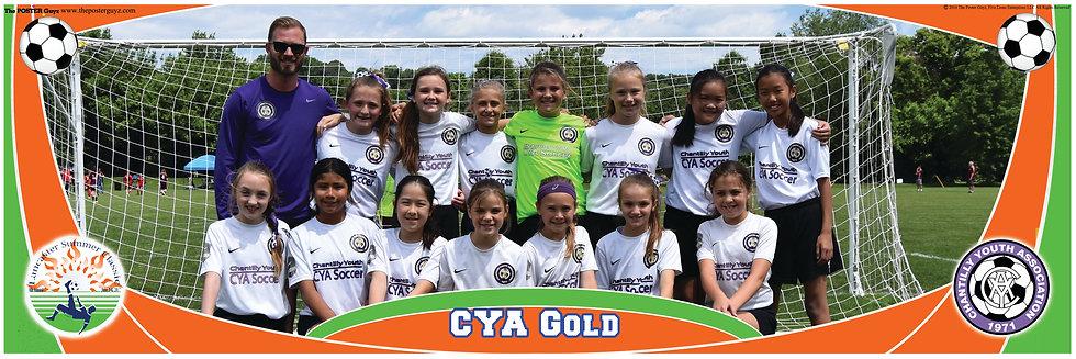 CYA Gold 06G U11G