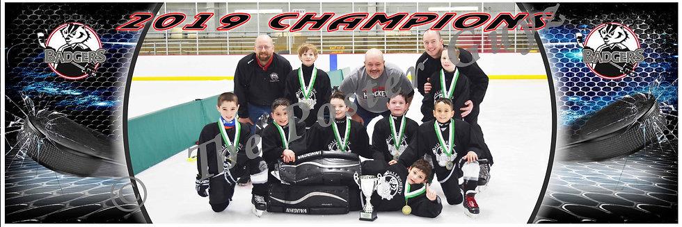 AHA Badgers Champions