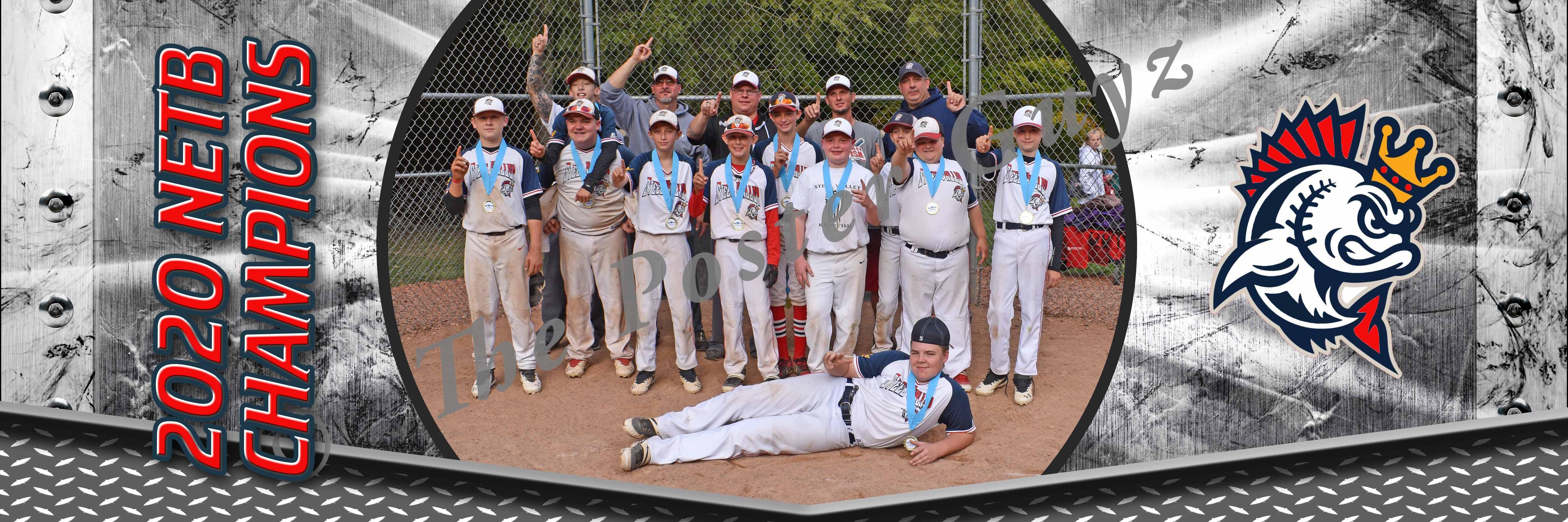 Steel Valley Kingfish 12U - Champions
