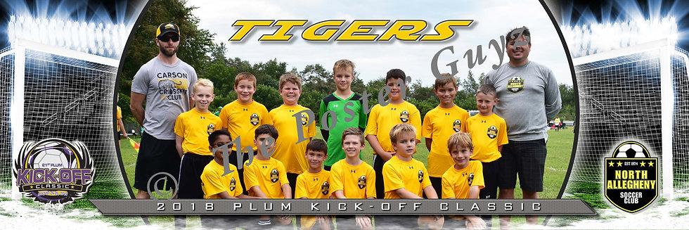 North Allegheny Tigers Boys U11