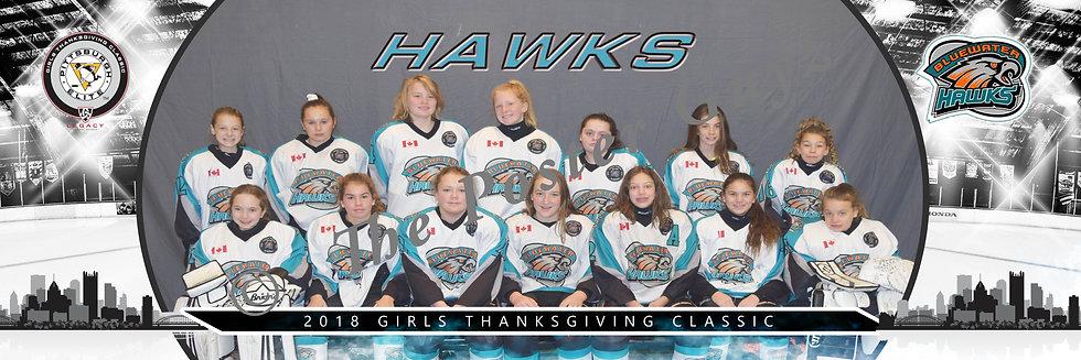 Bluewater Hawks U12-T2