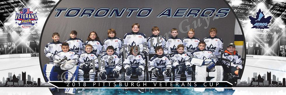 Toronto Aeros Squirt Minor